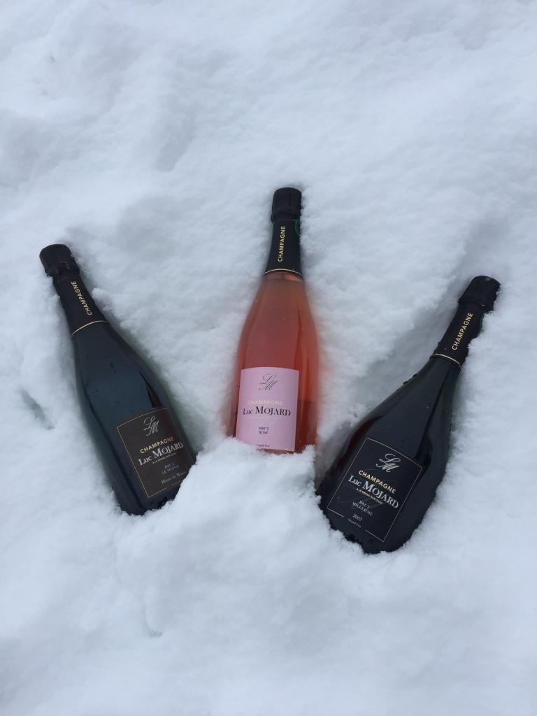 champagne luc mojard rafraichir bouteille