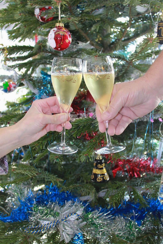 champagne luc mojard conseils dégustation
